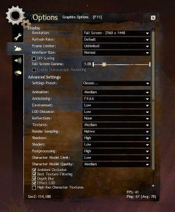 Guild Wars 2 - Graphics Settings